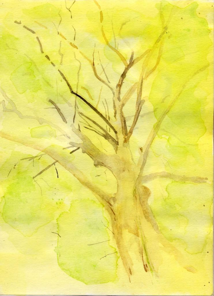 1408森の木 のコピー